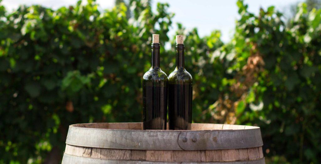 Taste Estate-Bottled Sparkling Wines with Breathtaking Views